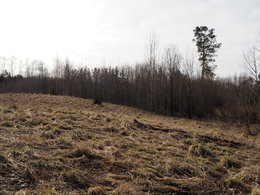 Parduodamas sklypas Dubės, Lukošiūnų k., 190 a ploto