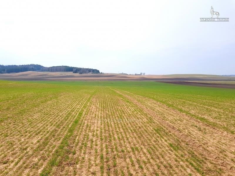 Parduodamas dirbamos žemės sklypas Diktariškių k., Radviliškio raj.  15,83 ha ploto - <strong>95 000 €